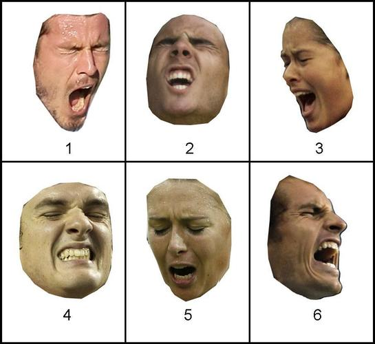 Can You Tell Emotion From Faces Alone?