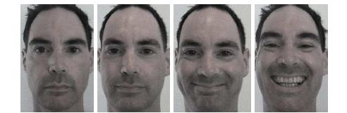 The images above show first a neutral face, then progressions of happiness from mild to extreme.